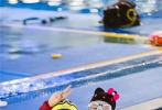 """上周,《妻子的浪漫旅行》第二季收官。今日(5月15日)节目组曝光了一组章子怡与汪峰的剧照。照片中,章子怡头戴Hello Kitty头套身着红黑紧身潜水服,身材纤细动人。汪峰则变身""""小黄人"""",与章子怡在水中嬉戏。"""