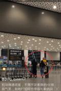 网友机场偶遇张丹峰洪欣夫妇 爆料二人全程无交流