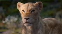 《狮子王》曝光全新电视预告 碧昂斯配音的娜娜首次亮相