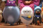 《愛寵大機密2》發布特別短片 萌寵們歡聚一堂