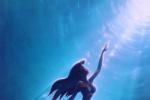 《小美人魚》選角遭質疑 獲哈利貝瑞、贊達亞力挺