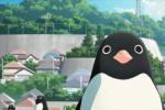 《企鹅公路》曝全新预告 2018年日本最强高分动画