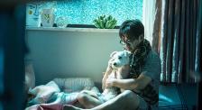 獨家解析《狗眼看人心》帶給觀眾怎樣的思考?