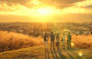 茁壮却迷茫的日本电影:一路磕磕绊绊,不变的是对人性的求索