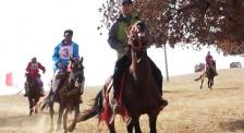 吴京内蒙古科右中旗比赛马 胆子不是一般的大