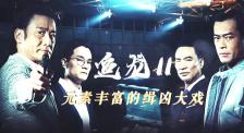《追龙Ⅱ》:卧底拆弹枪战追车 香港内地警方协办缉凶大戏
