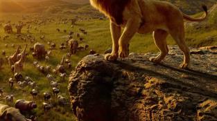 """""""真人版""""的《狮子王》,真的有必要拍出来么?"""