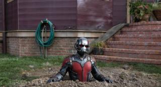 《蚁人3》定班底 《瑞克和莫蒂》编剧将执笔剧本