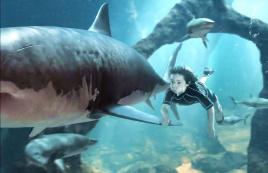 小男孩从小被鲨鱼养大,长大成为海洋之王,一部奇幻动作电影
