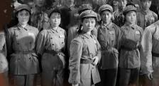 纪念中国人民志愿军抗美援朝出国作战70周年:战地玫瑰