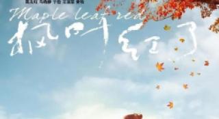 黄金时段热播电视剧收视综合分析(8月1日—8月7日)