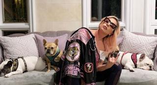 爱犬被偷遛狗员负伤 LadyGaga愿出50万美金赎回