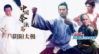 电影全解码系列策划:功夫电影季之中国拳术(中)阴阳太极