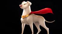 动画电影《DC超级宠物联盟》定档预告