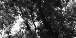 吴宇恒花园胶片大片释出 假日复古感诠释夏日影像
